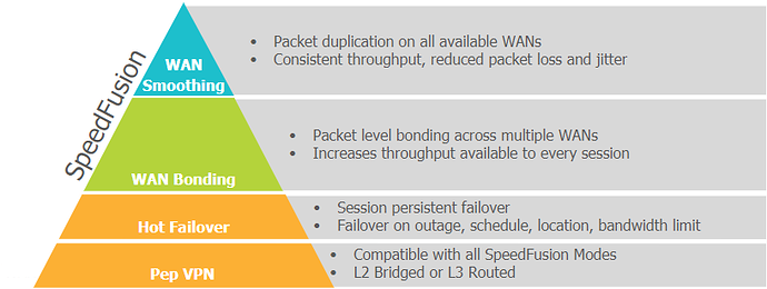 Speedfusion SDWAN options